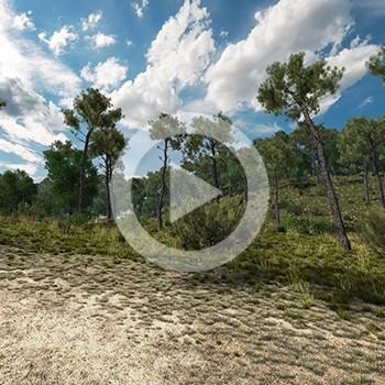 Réalisation d'animation 3D – ONF