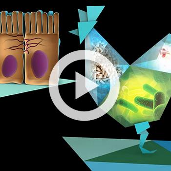 Présentation d'une solution petfood en hologramme – Adisseo